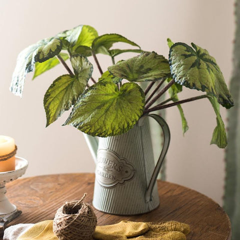 Rustic Begonia Leaf with Iron Pot Set