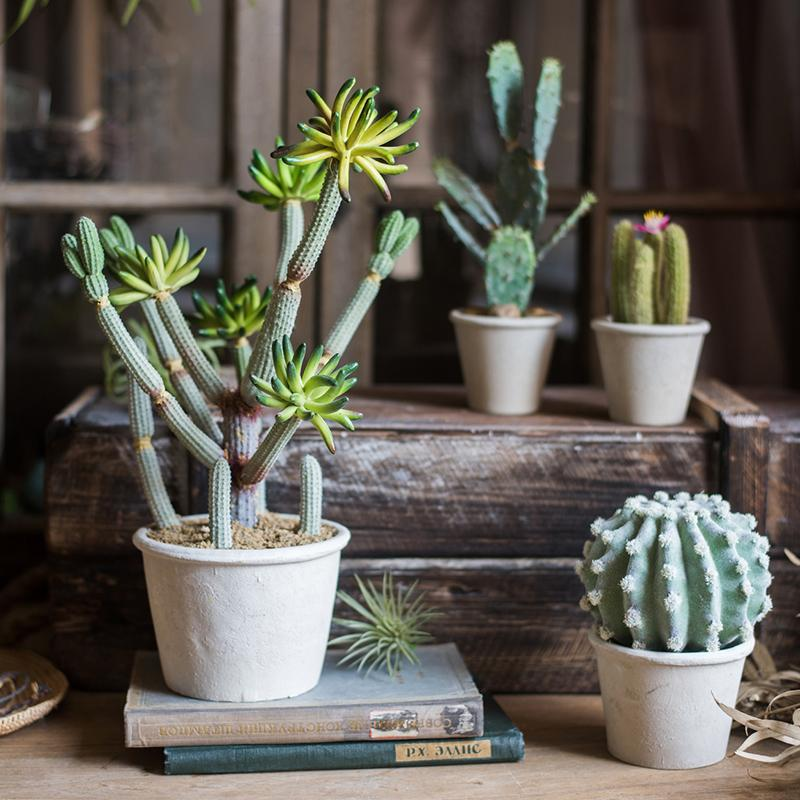 Rustic Cactus Bonsai Potted Plant - G Home Collection