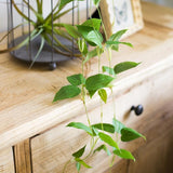 Rustic Artificial Green Ivy Leaf Vines 40