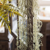 "Rustic Artificial Spanish Moss Vines 42"" Long"