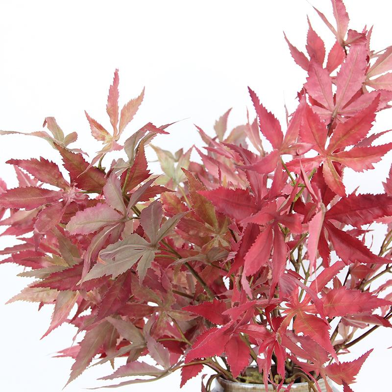 "Artificial Red Maple Leaf Stem 29"" Tall - G Home Collection"