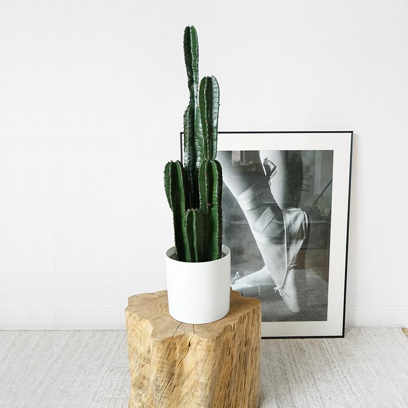 "Artificial Cactus Potted Cactus Plant 33"" Tall - G Home Collection"