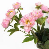 Silk 3 Princess Peony Bloom Stem in Light Pink 26