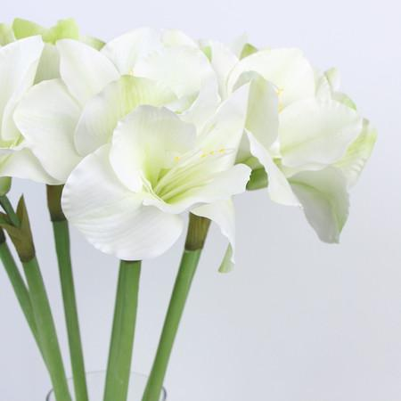 "Clivia Orchid Stem in White Green 30"" Tall"