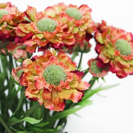 "Silk Cosmos Stem Orange Red 19"" Tall - G Home Collection"