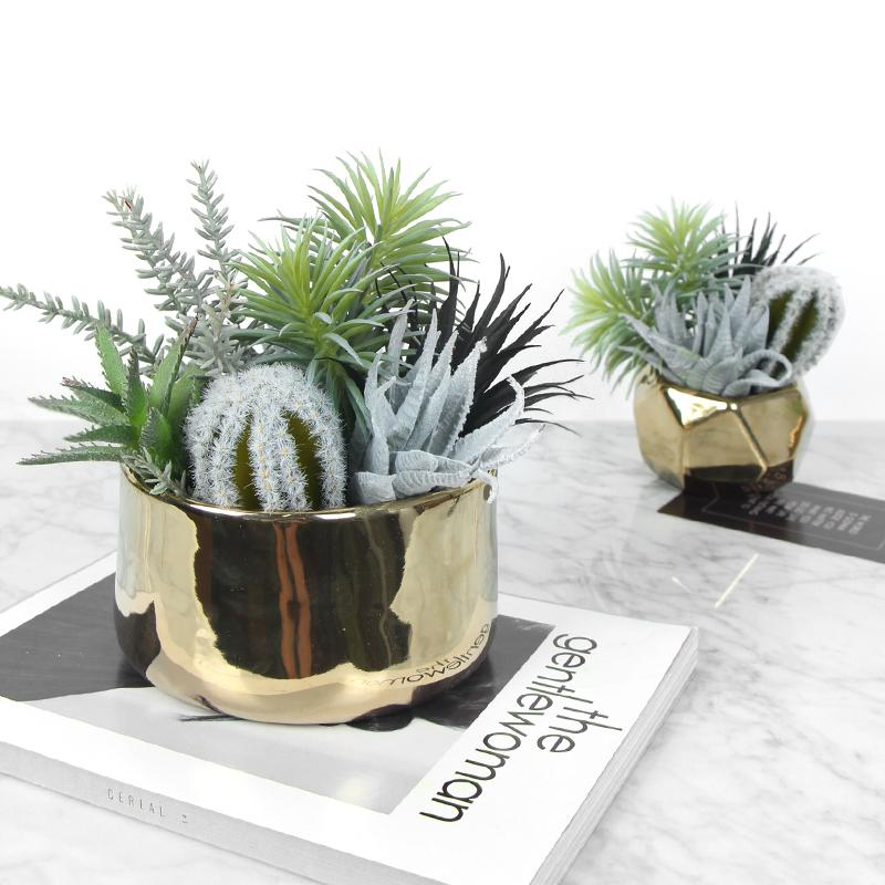 Artificial Succulent Cactus Plant Centerpiece - G Home Collection