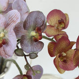 Real Touch Butterfly Orchid Stem in Light Purple and Yellow Purple 29
