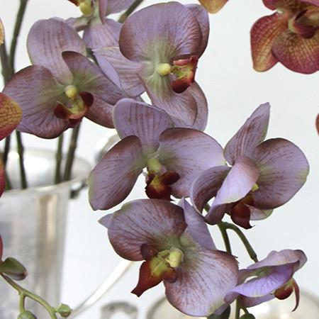 "Real Touch Butterfly Orchid Stem in Light Purple and Yellow Purple 29"" Tall"