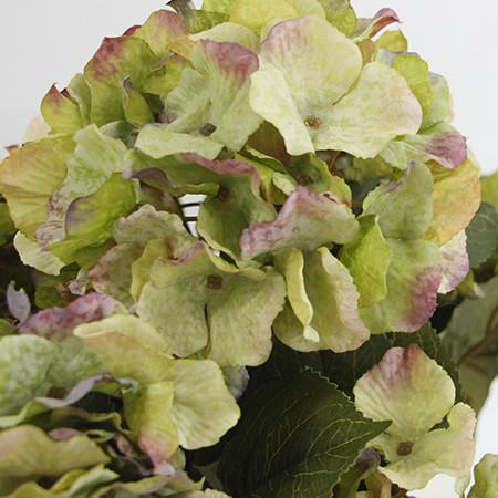 "Silk 5 Hydrangea Bloom Bush in Green 21"" Tall - G Home Collection"