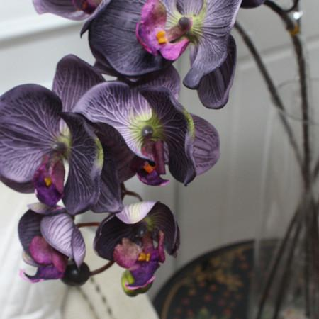 "Silk Butterfly Orchid Stem in Dark Purple 37"" Tall - G Home Collection"
