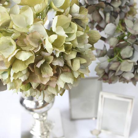 "Silk Single Hydrangea Stem in Green 19"" Tall - G Home Collection"
