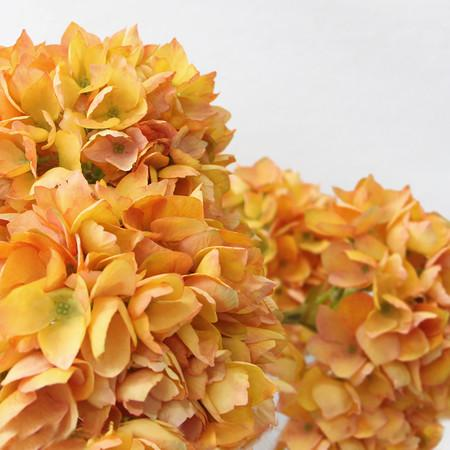 "Silk Single Hydrangea Stem in Orange 19"" Tall - G Home Collection"