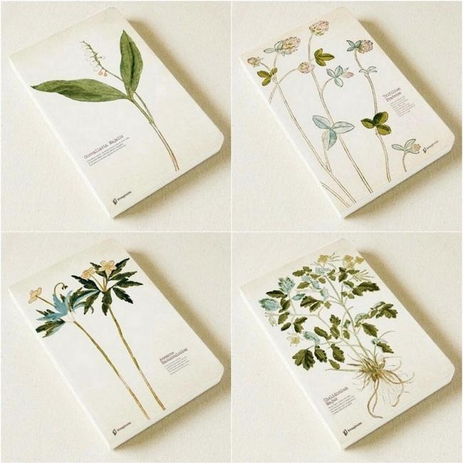 Herb Theme Blank Page Book Randomly Picked Set of 2 - G Home Collection