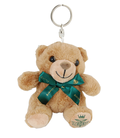 Ashford Castle Teddy Bear Keyring