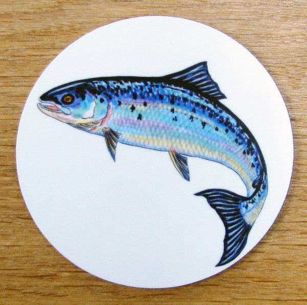 Richard Bramble Fish Coasters