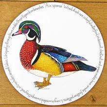 Load image into Gallery viewer, Richard Bramble Farm Animals and Birds Tablemats'