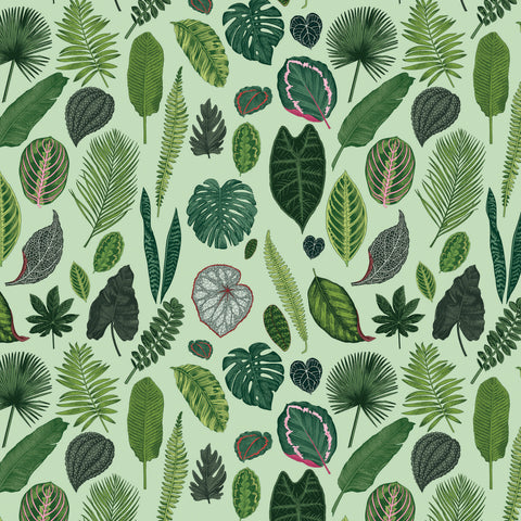 Foliage on Light Green Fabric