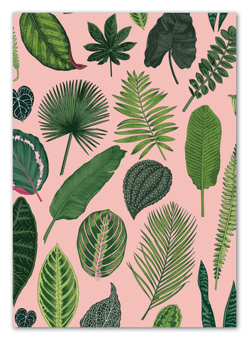 Foliage on Pink Greeting Card with Envelope