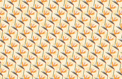 Striking Strelitzias Wallpaper