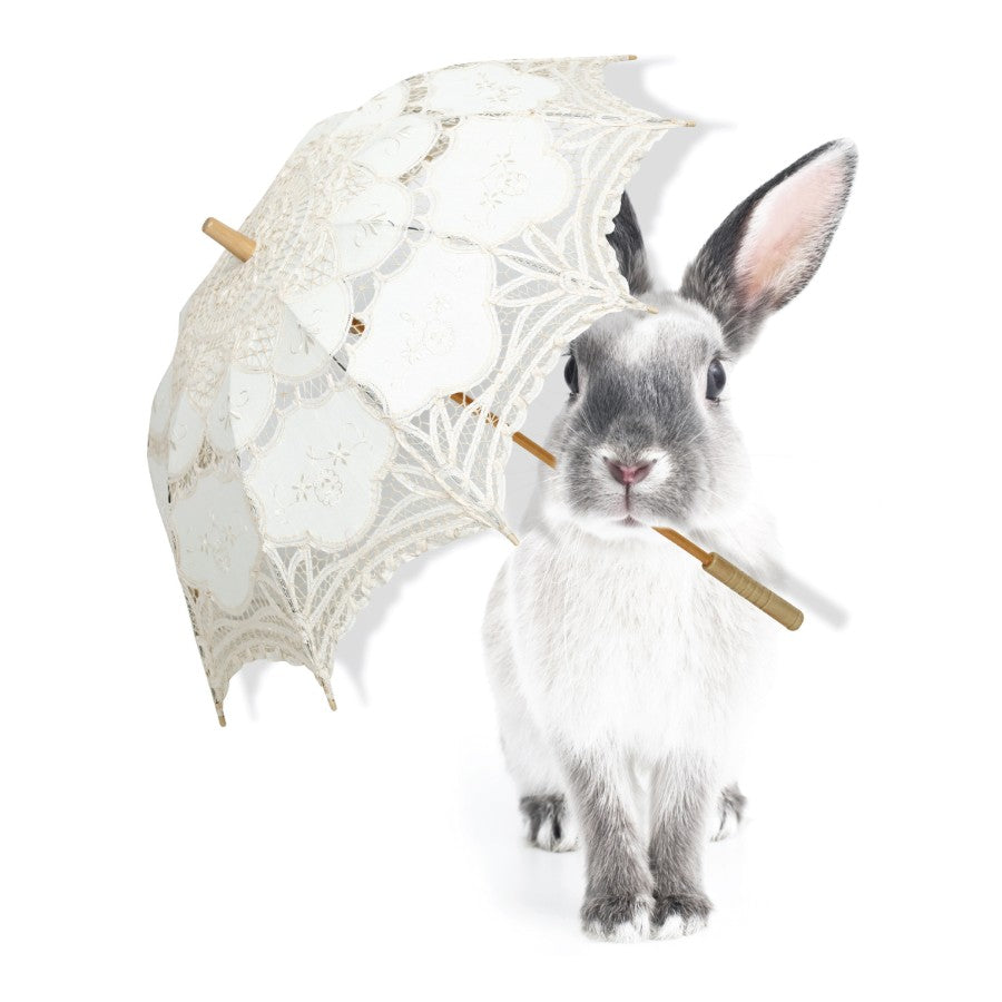 HARRY'S SINGING IN THE RAIN Wall Sticker SET