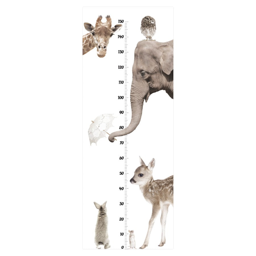 I LOVE ANIMALS GROWTH CHART Wall Sticker
