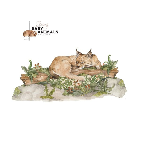 SLEEP LITTLE WILD CAT Wallsticker
