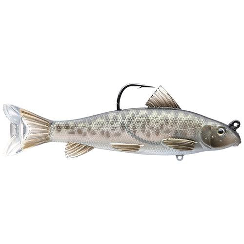 Sucker Swimbait - Freshwater, 5 1-2