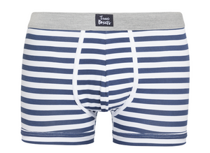 Little Lion - blue white striped Brief - True Boxers