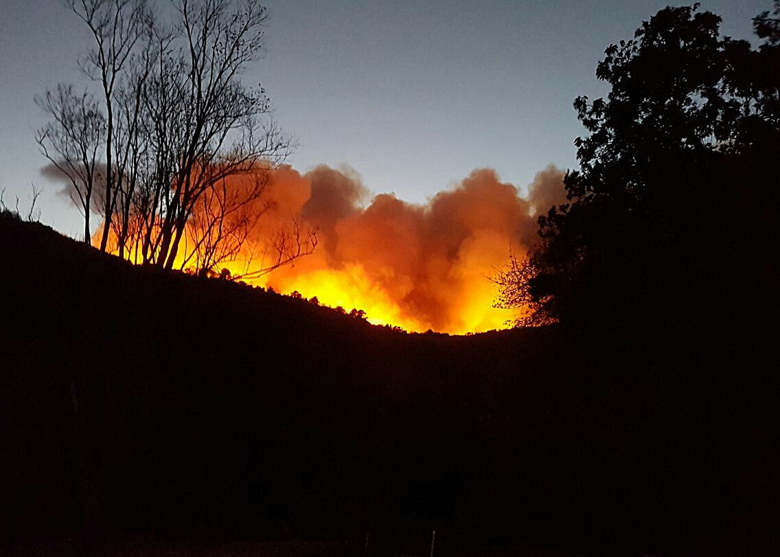 Knysna fire 2017 near Elandskraal, South Africa
