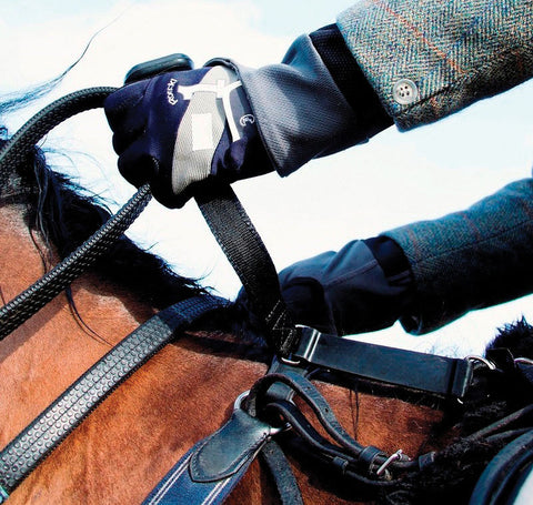horse rider safety handle