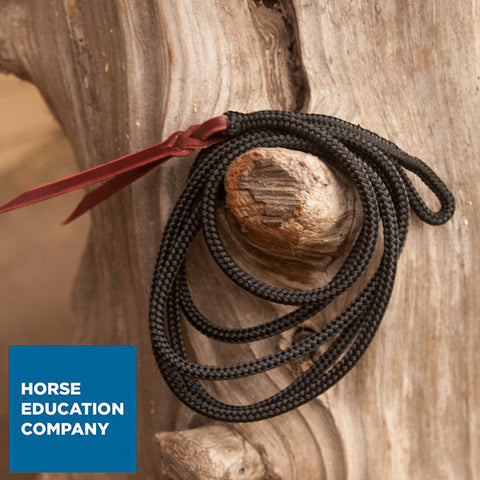 Replacement Strings for Natural Horsemanship Sticks