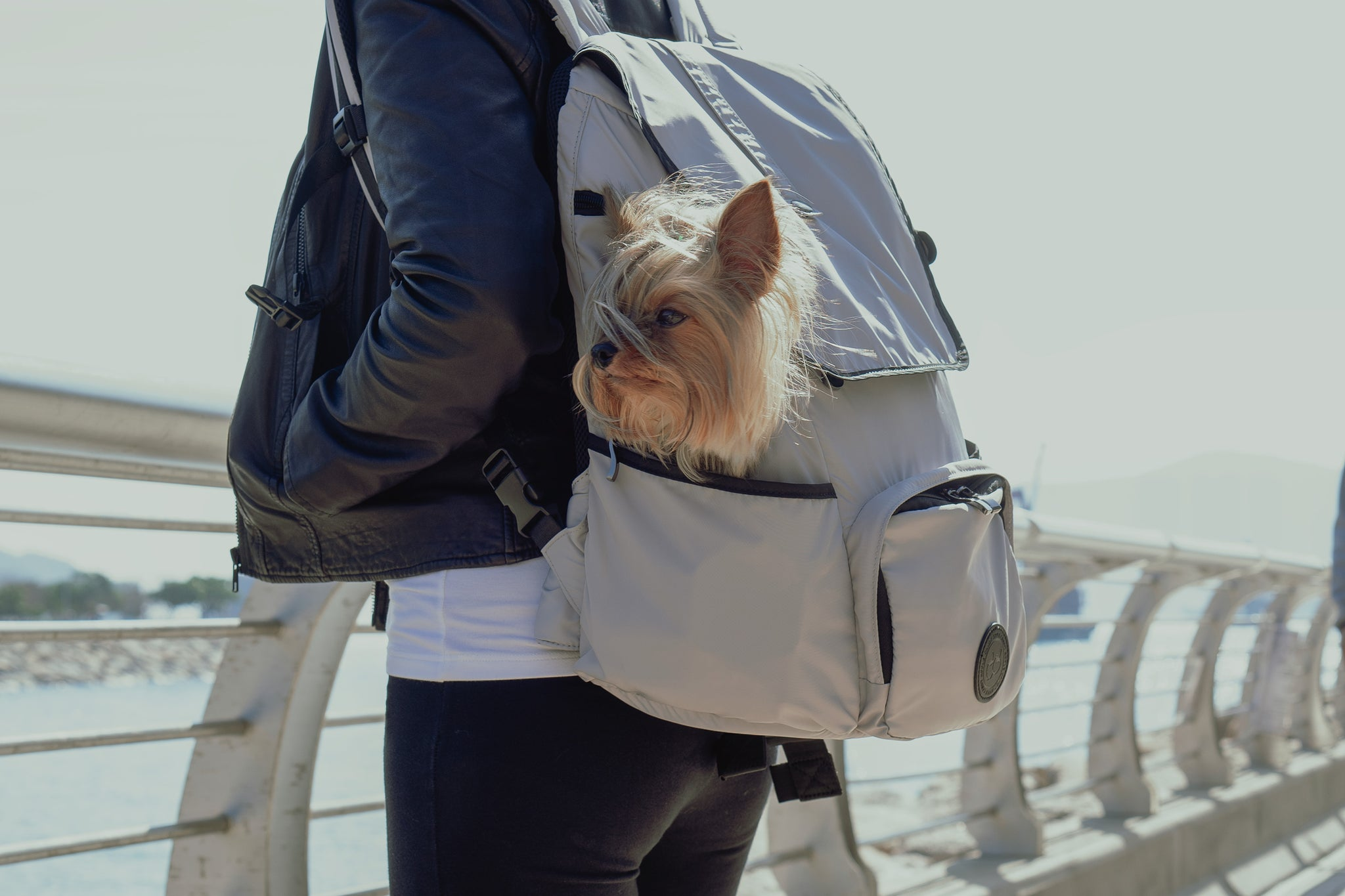 model carrying the backpack dog carrier at the waterfront Promenade
