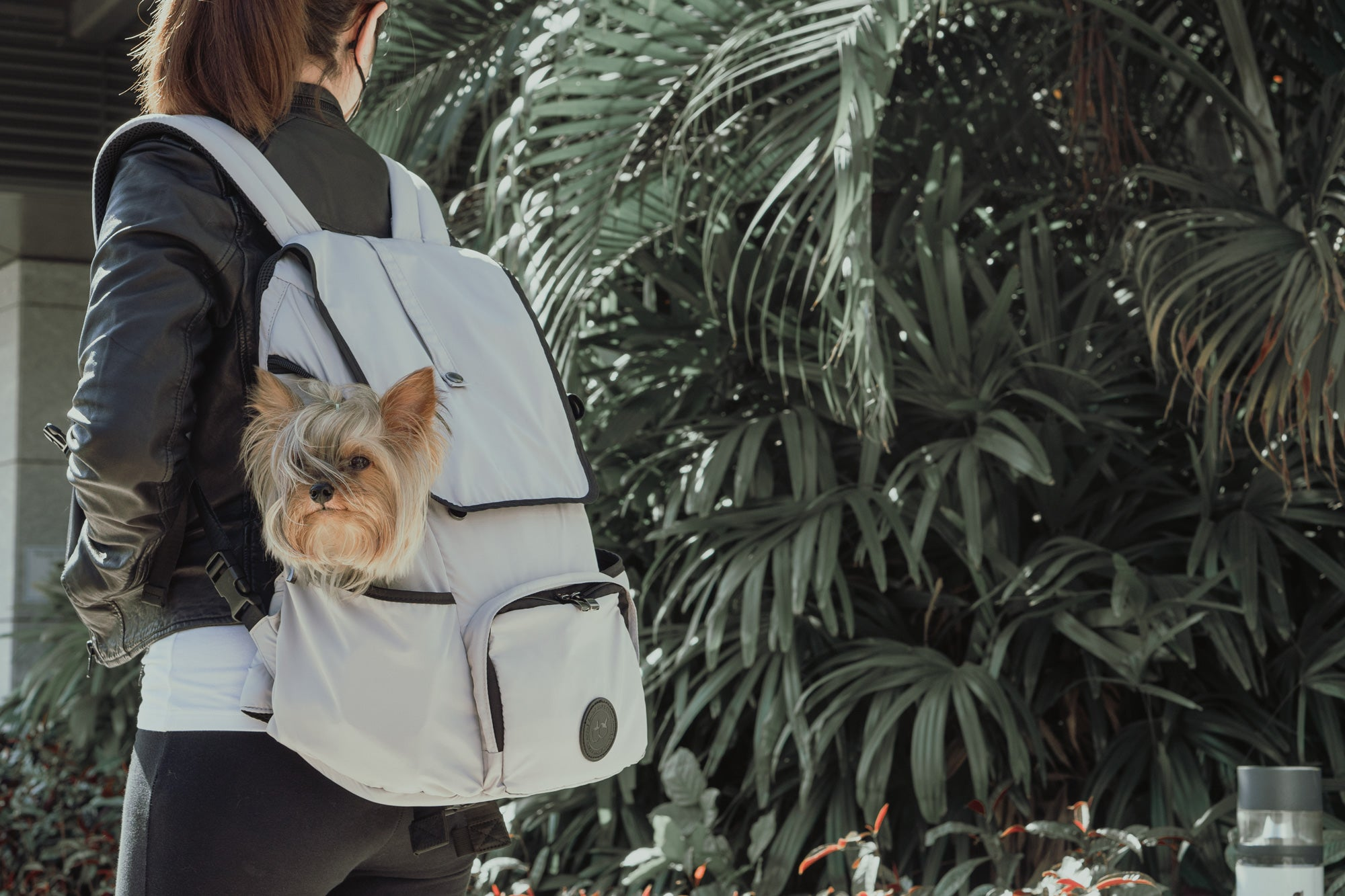 model carrying the backpack dog carrier with a small dog in it