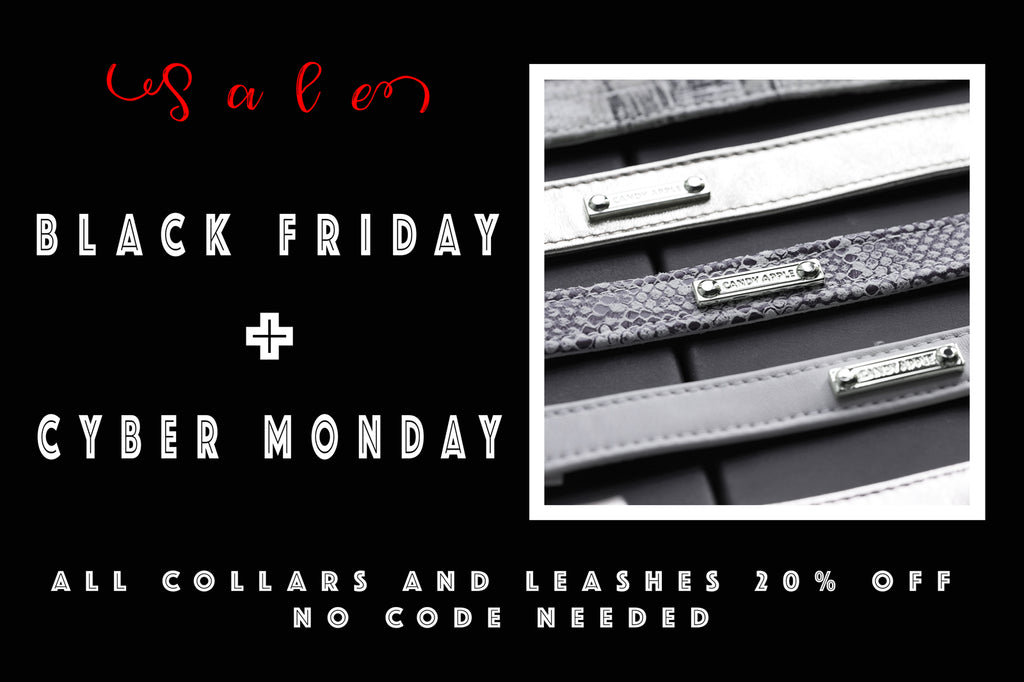 Black Friday Cyber Monday Promotion