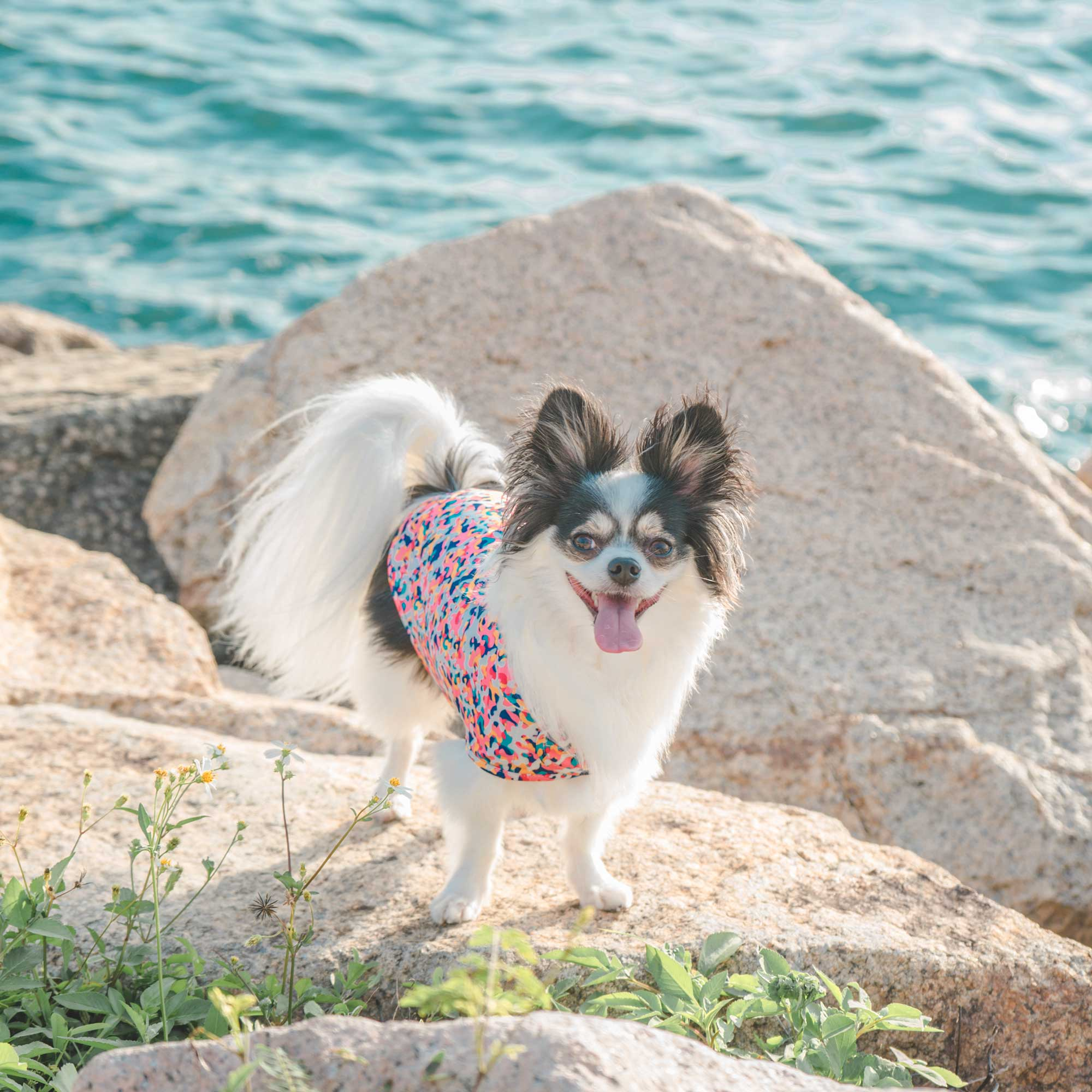 cooling vest for dog in colourful camo print