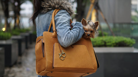 Collie Carrier - Dessert Tan Leather
