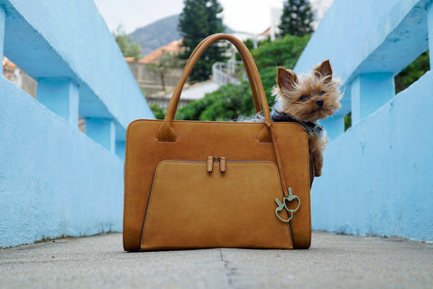 Collie Carrier (Dessert Tan Leather)