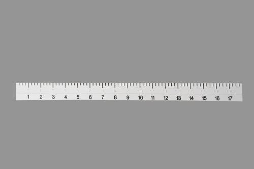 18 Braille Ruler (Plastic)""