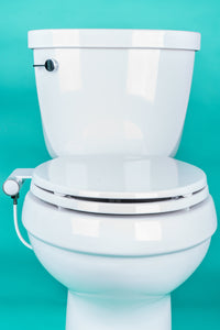 toilet with attachment