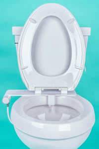 toilet with open seat