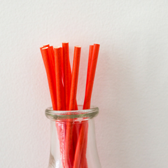 Burnt Orange Paper Straws -Set of 25