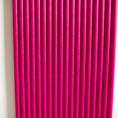 Pink Paper Straws-Set of 25