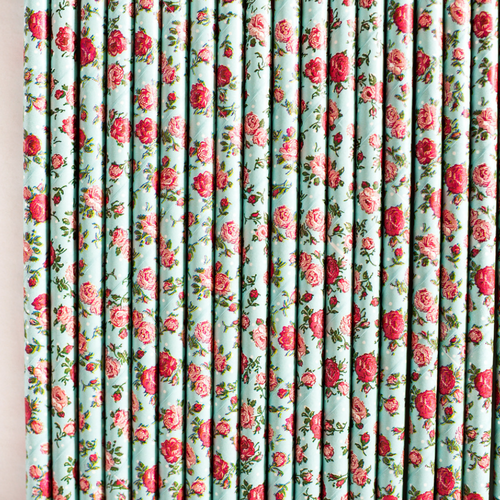 Blue & Red Floral Paper Straws