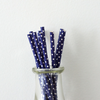 Navy with White Polka Dots Paper Straws
