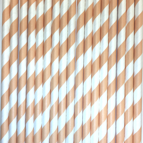 Peach Striped Paper Straws -Set of 25