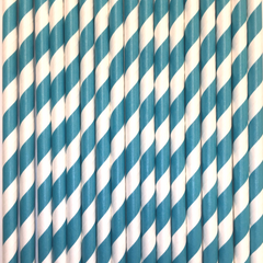 Teal Striped Paper Straws -Set of 25