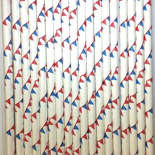 Blue & Red Bunting Flag Straws -Set of 24