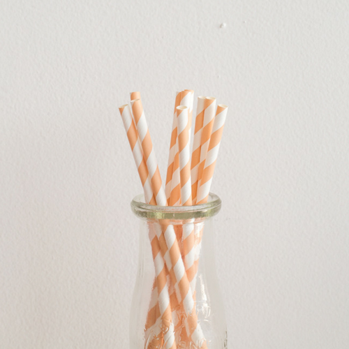 Peach Striped Paper Straws