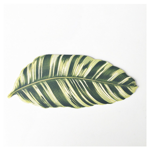 Banana Leaf Palm Card