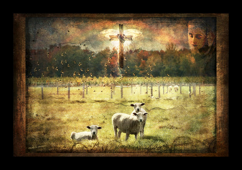 "LCP ""Sheep Herder"" Canvas Print"